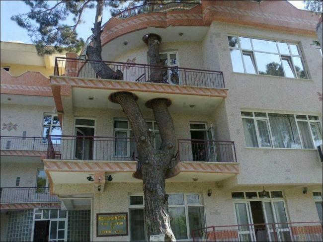 Estos vecinos están muy comprometidos con el medio ambiente / Recreo Viral