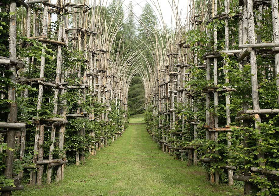 Catedral Vegetal, Italia