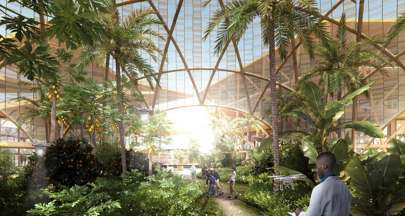 La ciudad tiene instalaciones para producir su propia energía, desalinizar agua y obtener calor / Oceanix City