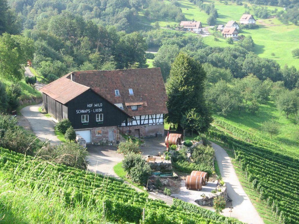 Vista general del viñedo / Schlafen im Weinfass