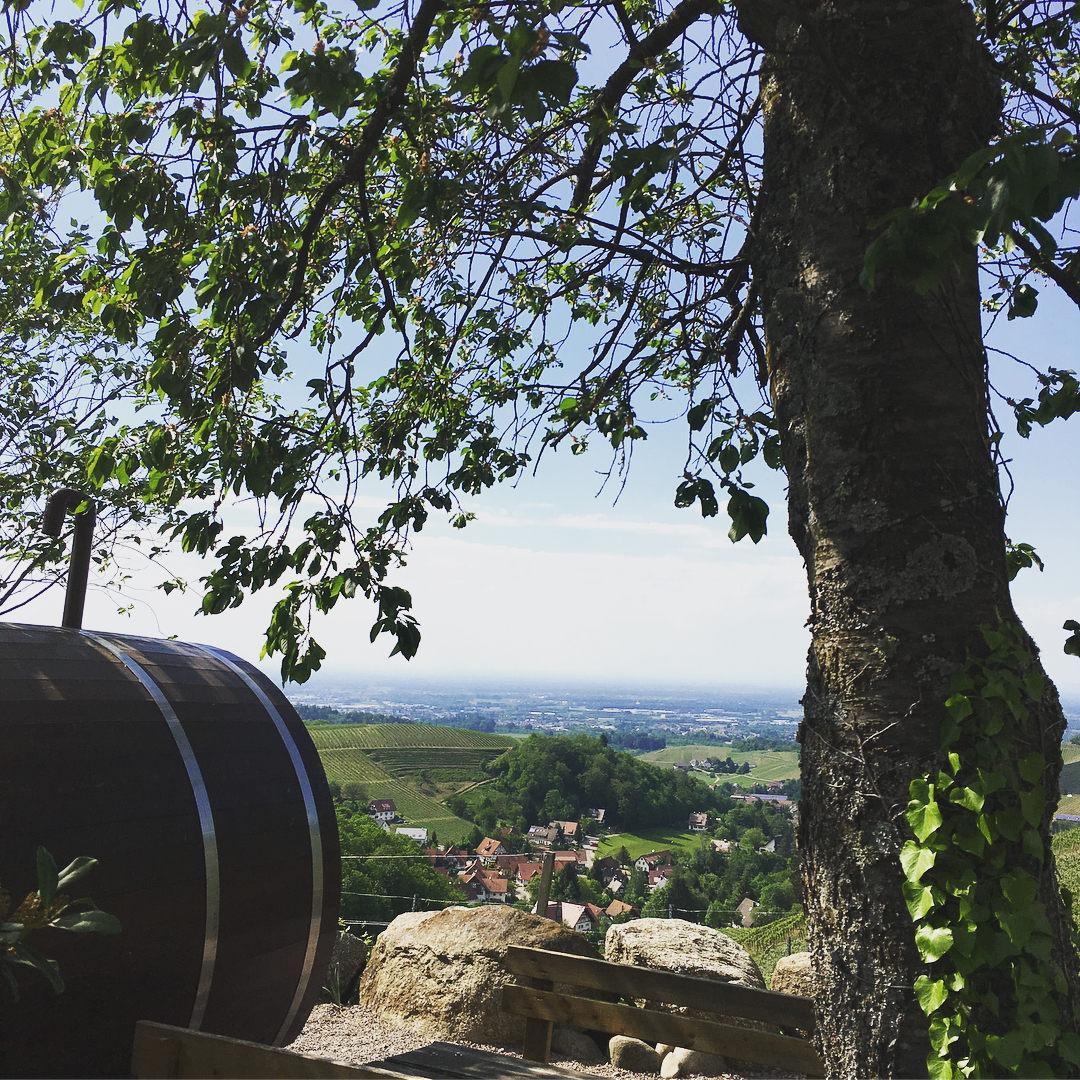 Vistas desde las habitaciones / Schlafen im Weinfass