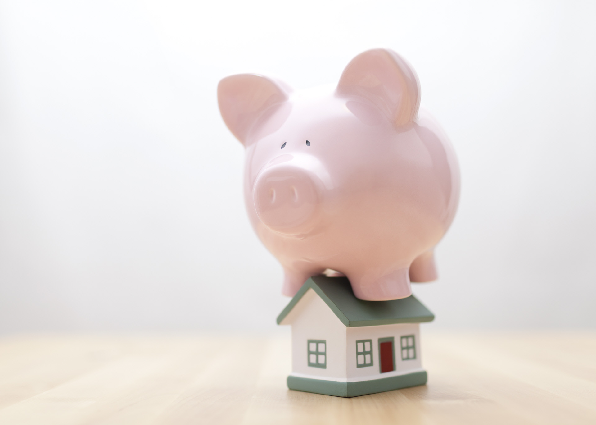Un cerdo encima de una casa