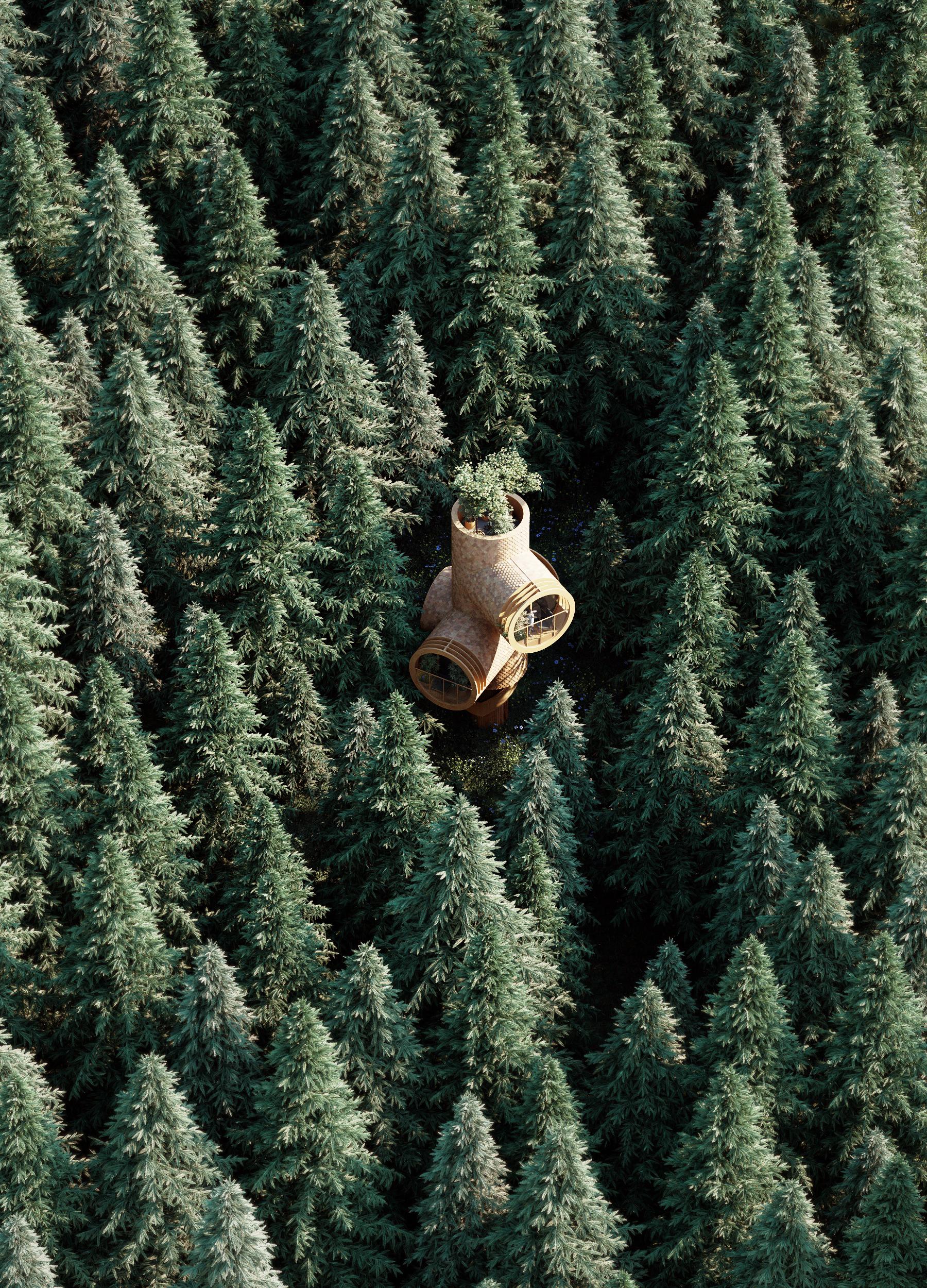 Se camufla en el entorno natural