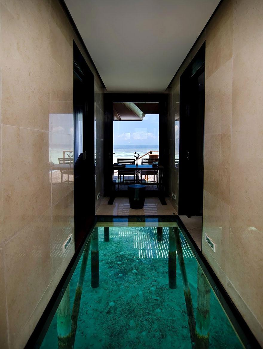 Una piscina peculiar