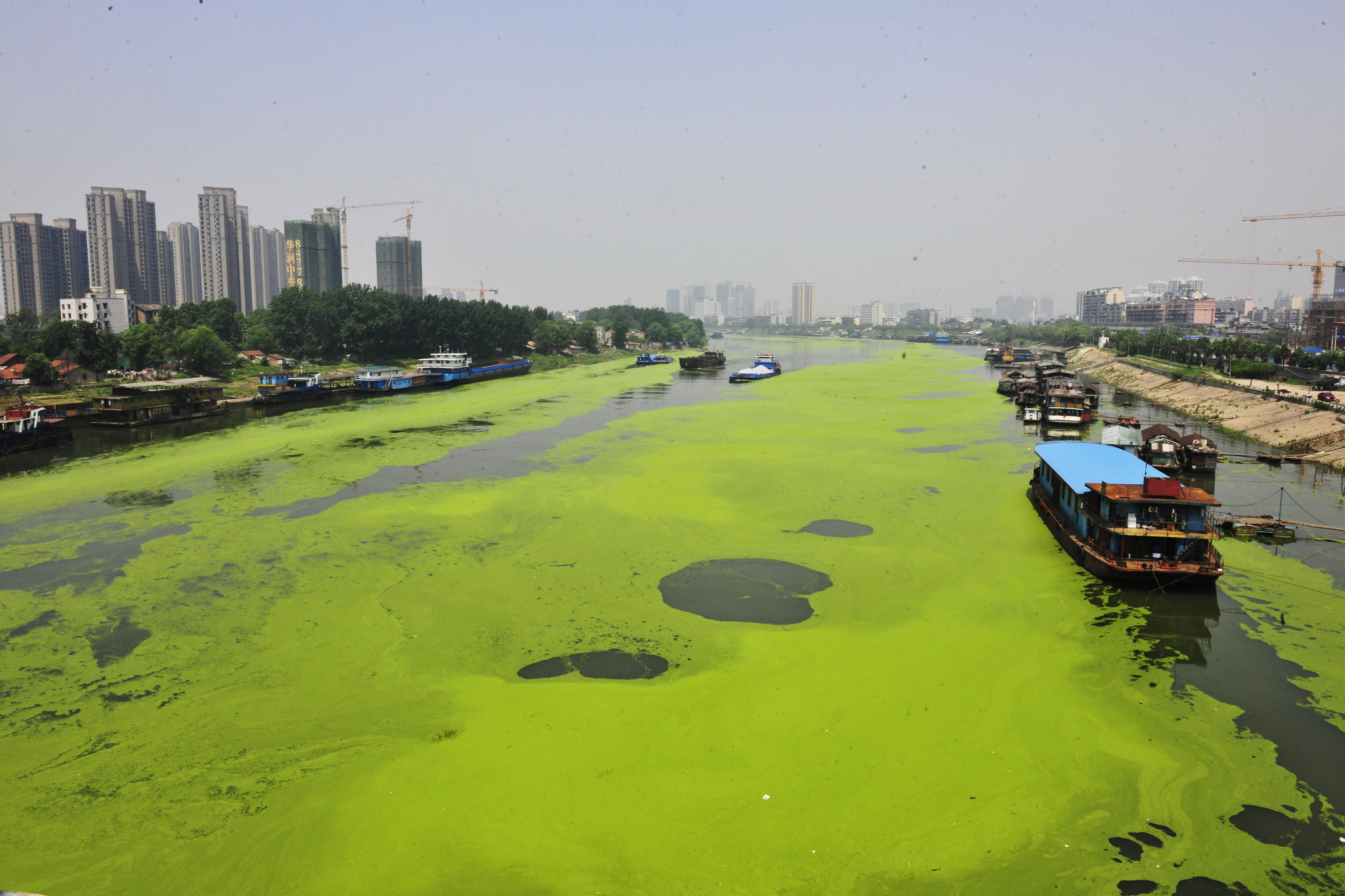 El río Hanjiang a su paso por Wuhan (China) / Gtres