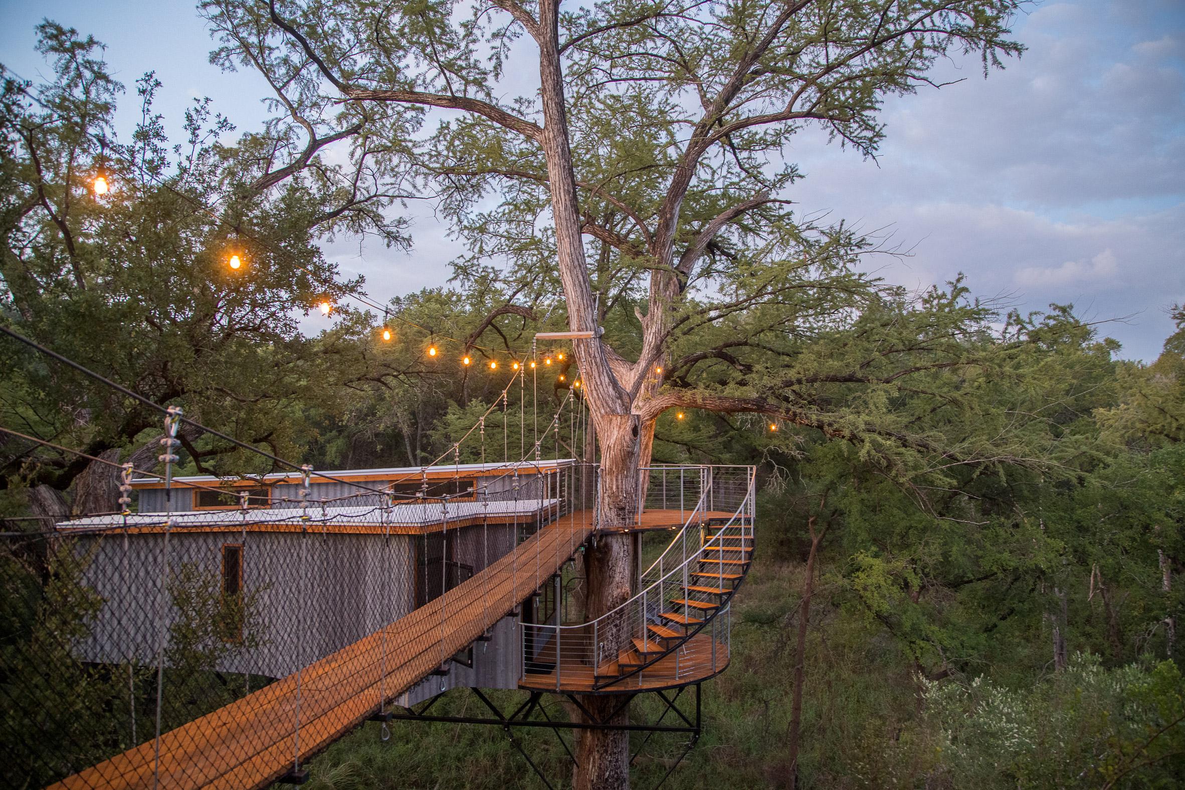 Puente colgante / Smiling Forest/ArtisTree