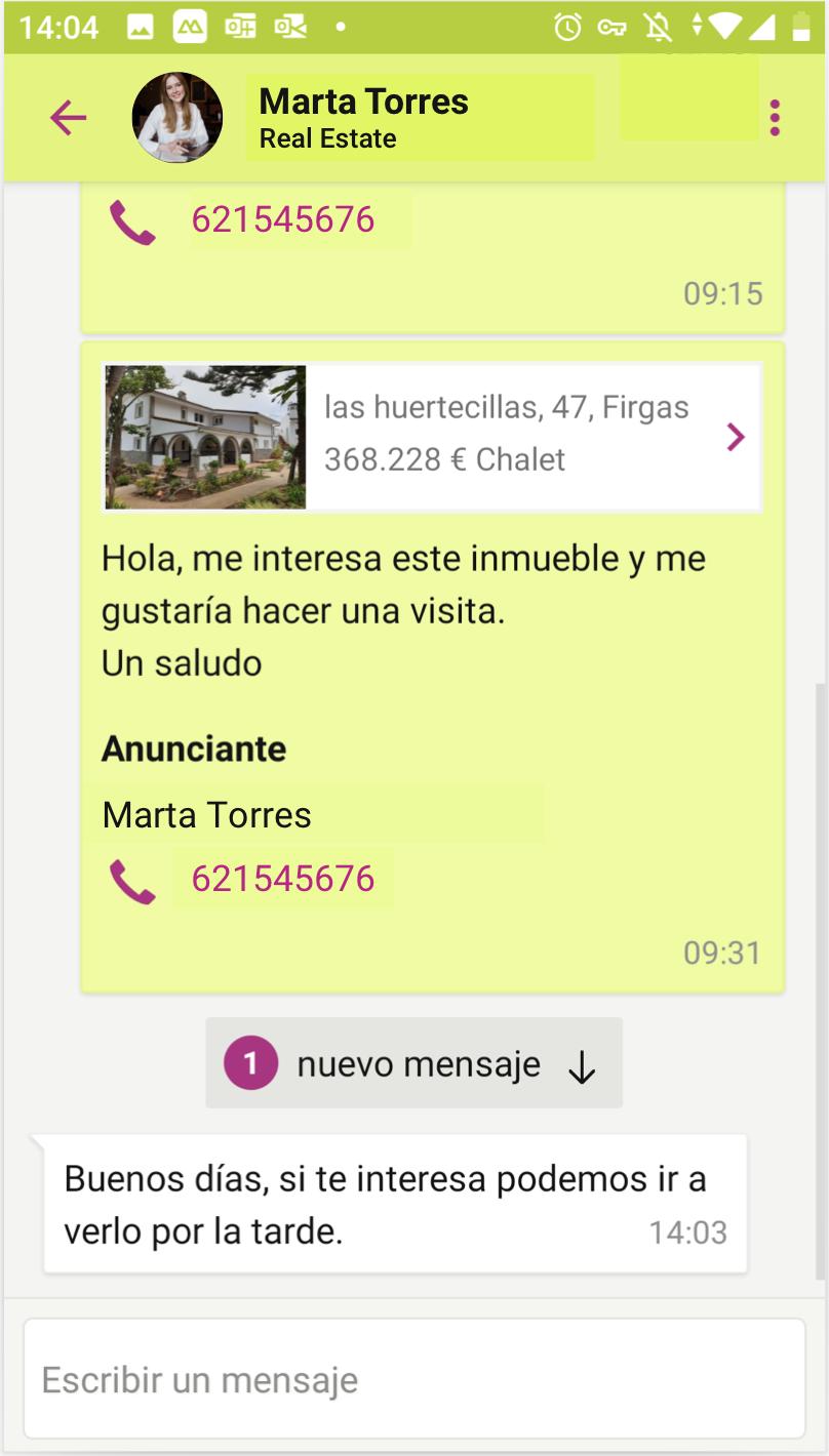 Detalle de conversación en el chat desde la vista del interesado en la app