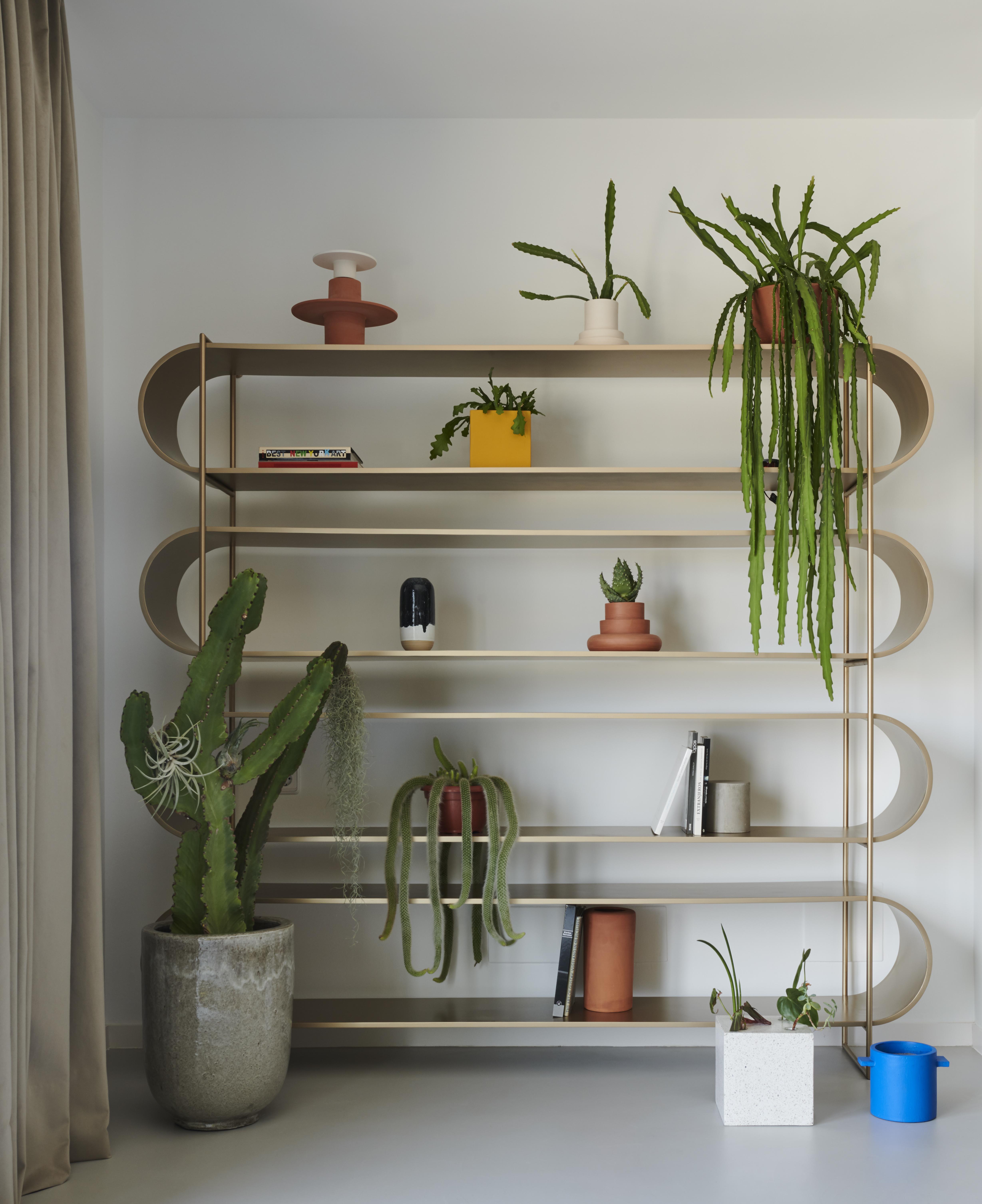 Abierta y con muchas plantas