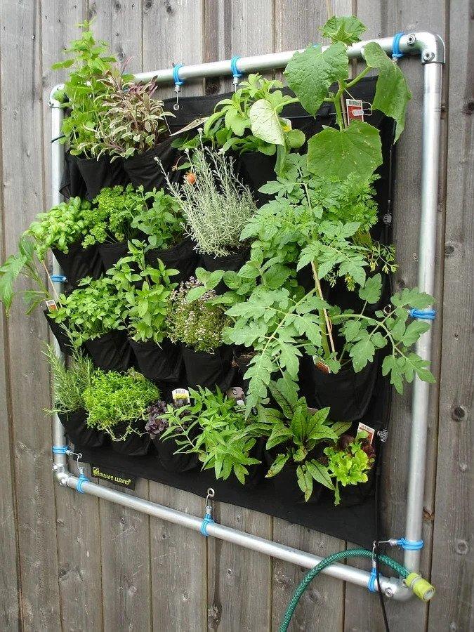 Jardines aromáticos