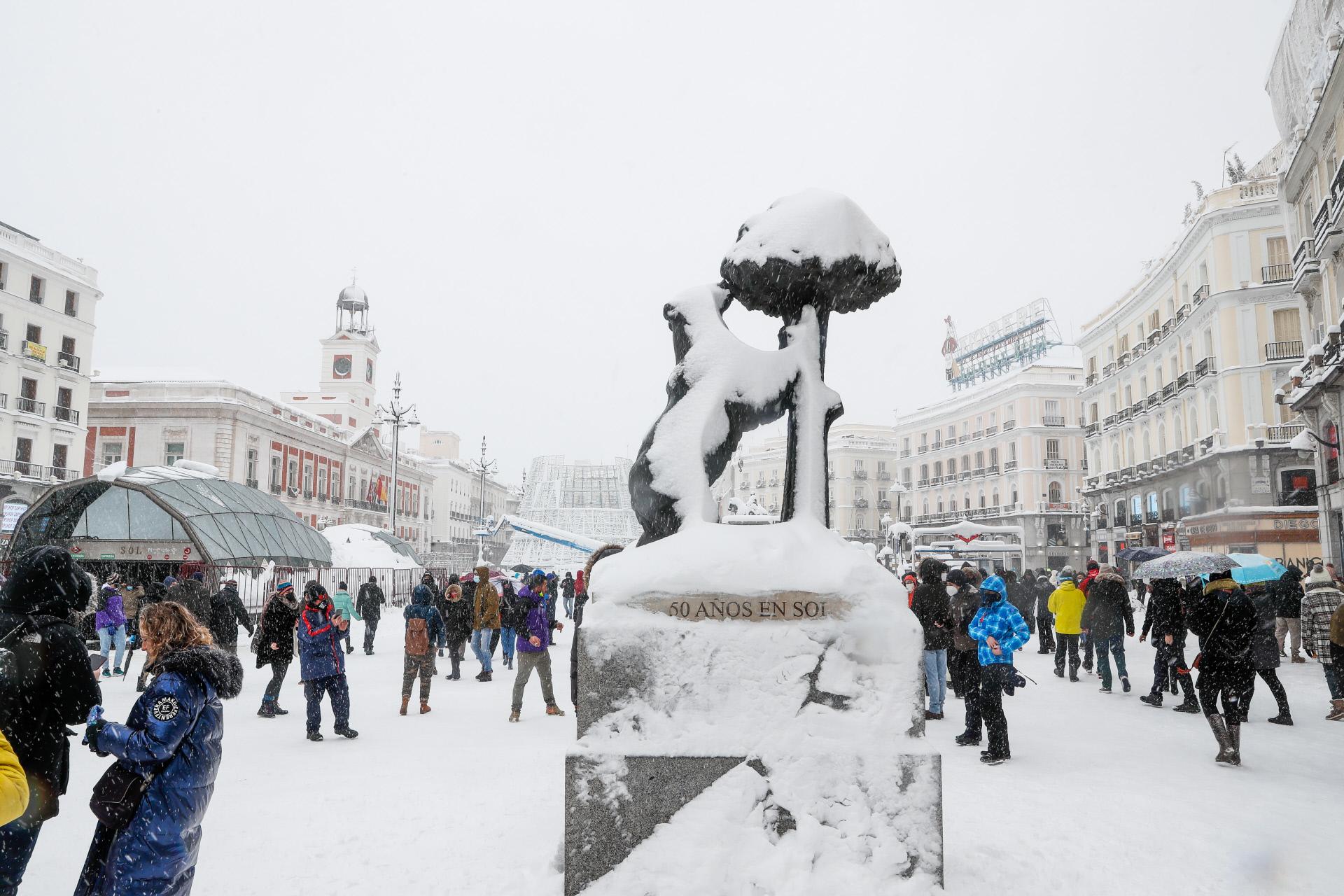 El Oso y el Madroño de Sol cubiertos de nieve
