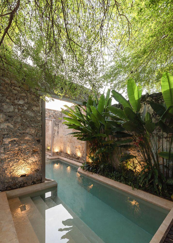 Un oasis dentro de casa