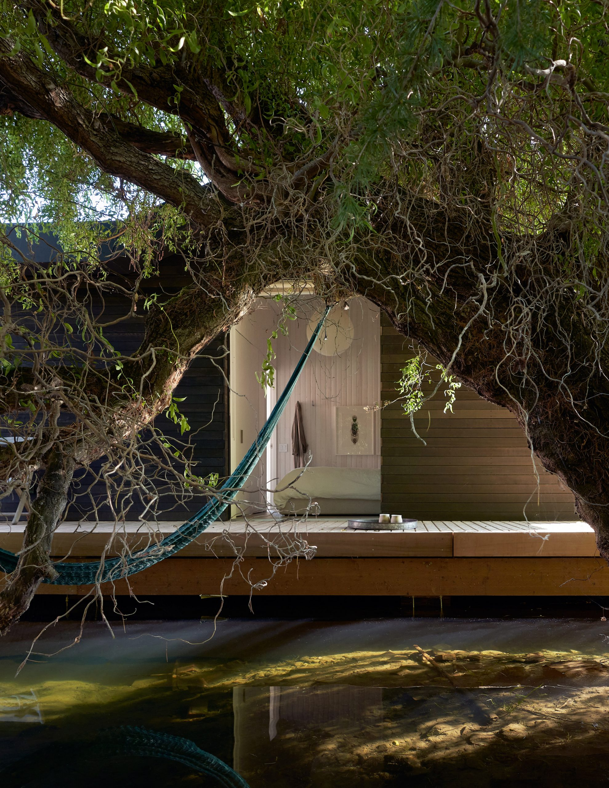 Rodeada de agua y con árboles