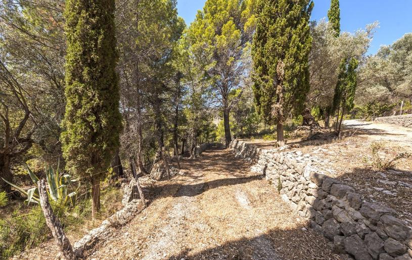 Con caminos privados para disfrutar del entorno natural