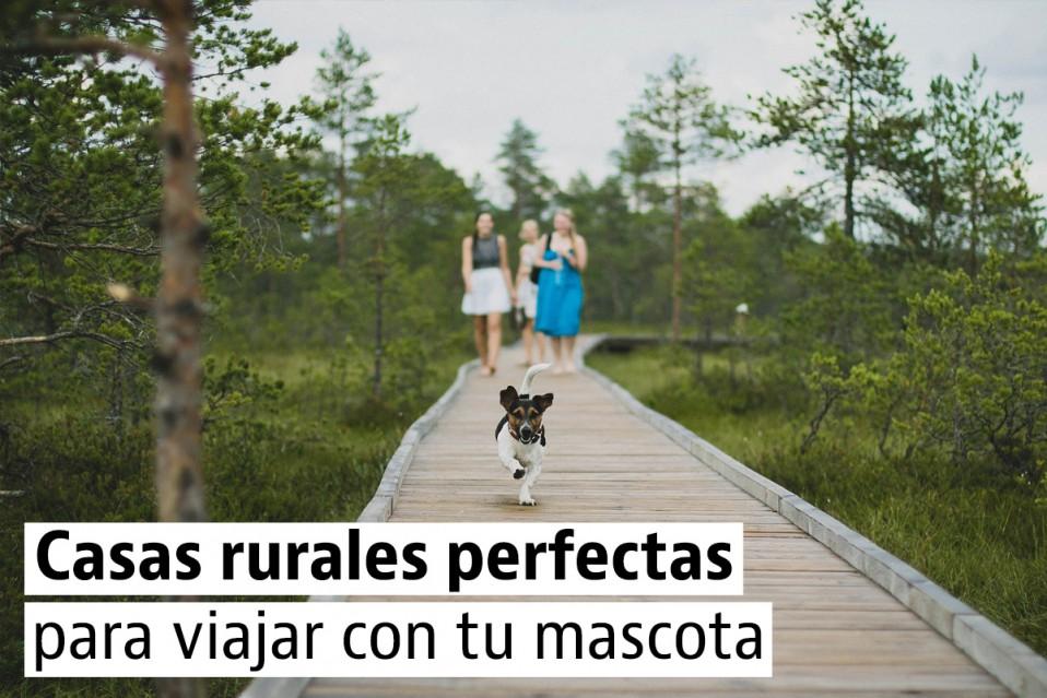 Casas rurales para una escapada con tu mascota