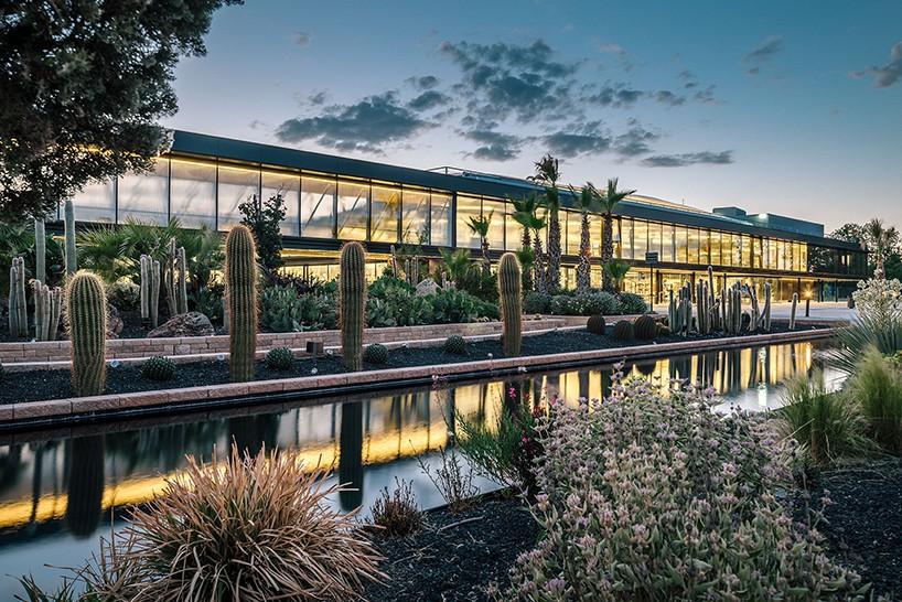 El jardín de cactus más grande y espectacular de Europa está en ...