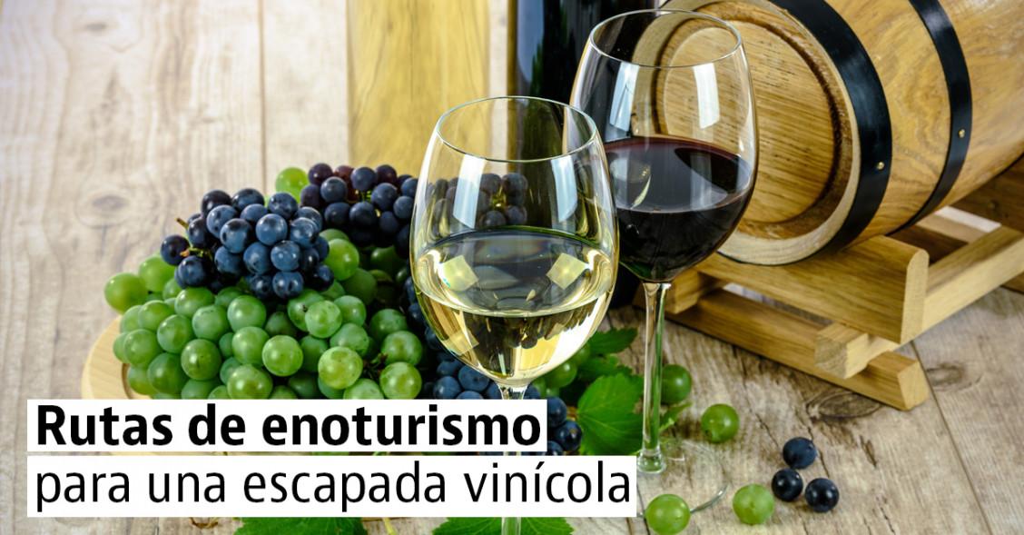 Las mejores rutas del vino para una escapada enoturística