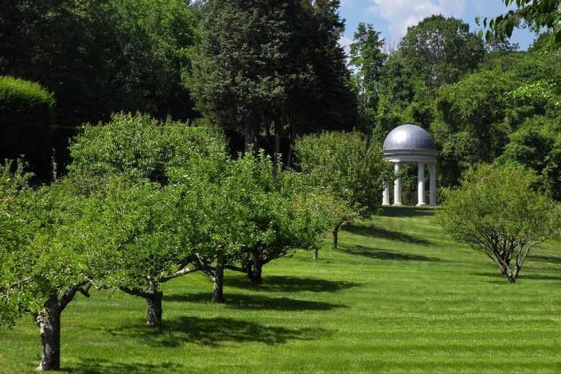 Amplios espacios para árboles y jardines