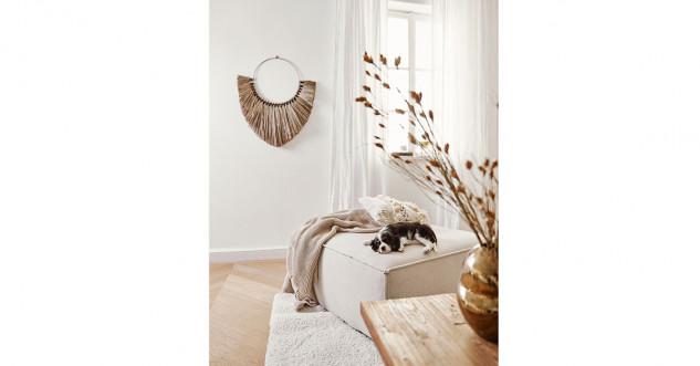 salon avec des couleurs pales et un chien sur un canapé