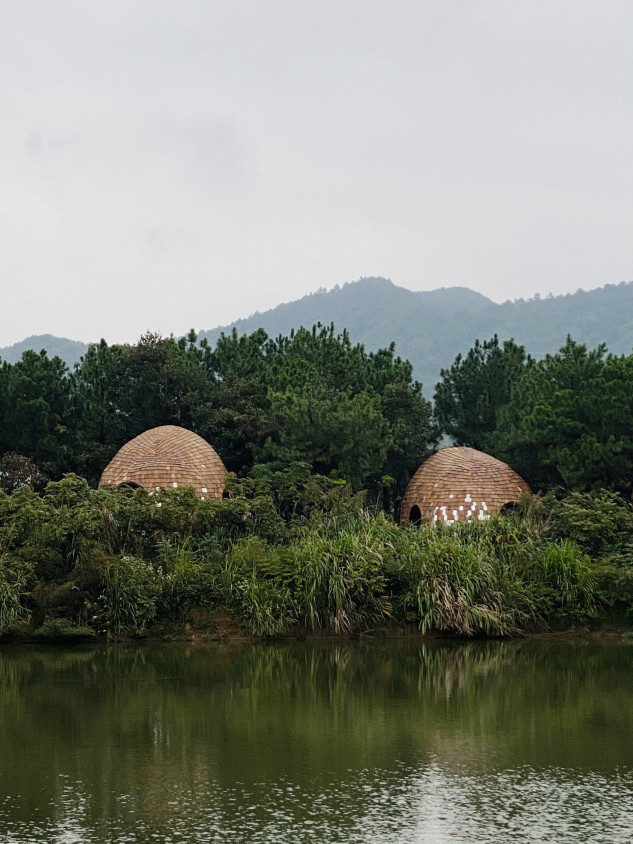 Fangfang Tiang/Tree Wow