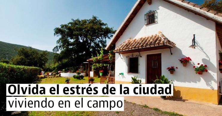 Casas rurales a buen precio