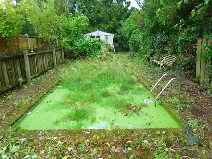 Pocas piscinas incluyen vegetación