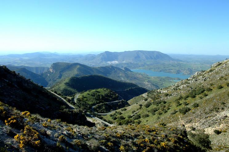 España : las rutas del aceite de oliva  Sierracadiz1